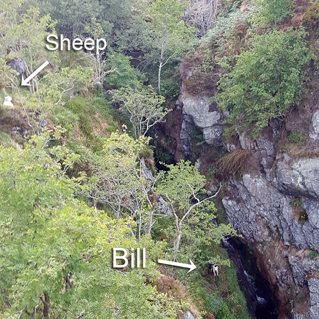 Bill's location near the head of the waterfall (Pic: Gary Mitchell)